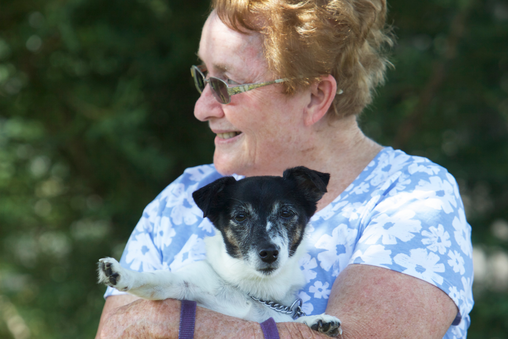 pets in aged care
